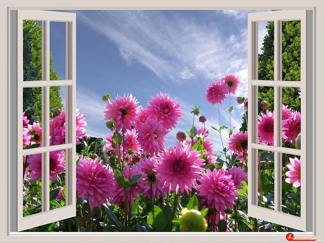Querido Deus Em Tuas Mãos Coloco Minhas Preocupações: Blog Recanto Da Natureza