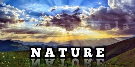 Amazing facts in Hindi about nature -  प्रकृति के बारे में रोचक तथ्य
