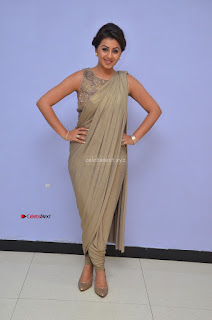 Nikki Galrani in Saree 123.JPG