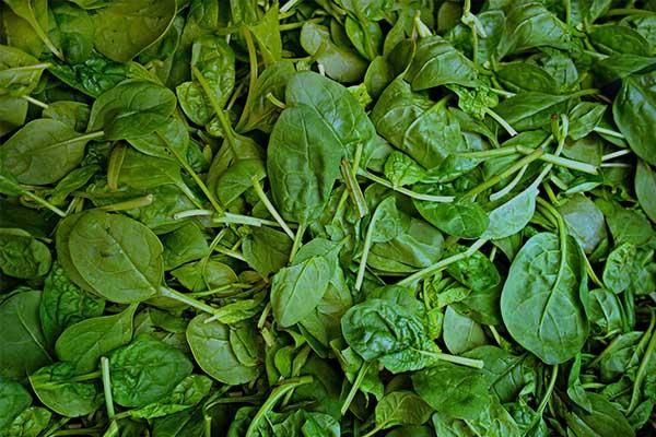 Bayam - 9 Sayuran Yang Membantu Dalam Diet Anda Untuk Membakar Lemak Perut