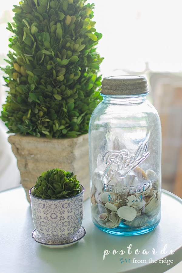 preserved boxwood topiary and vintage blue mason jar with shells