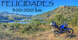 300.000 KM FELICIDADES BICHA-7