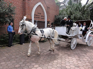 Luxurious Cinderella Wedding Carriages