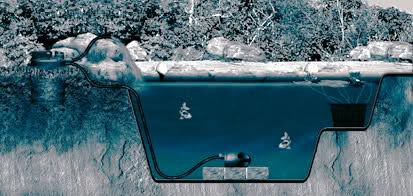 Pirana aquarium come allestire un acquario per tartarughe for Acquario per tartarughe piccole