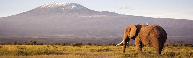 Une expérience de voyage qui ne s'oublie pas au Kenya