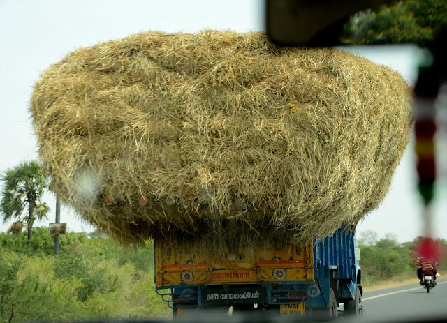 Viajar en coche India