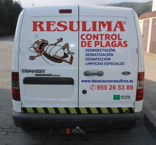 Desratizaciones en Sevilla