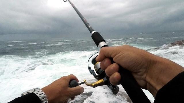 CA%25C3%2591A - Insistiendo en la costa en busca de lubinas 🐟🐟🐟