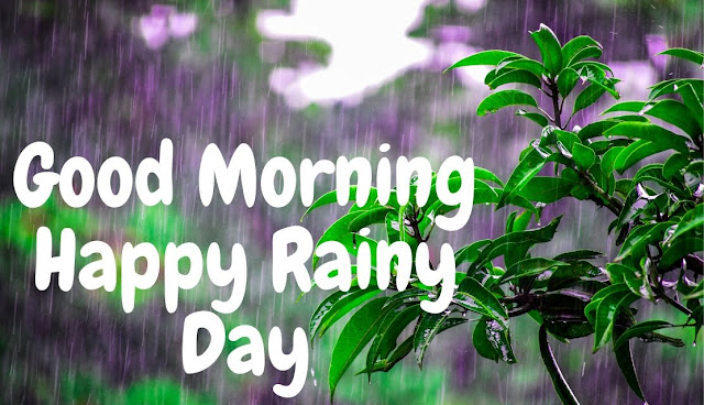 Good Morning Have a Blessed Good Morning Happy Rainy Day