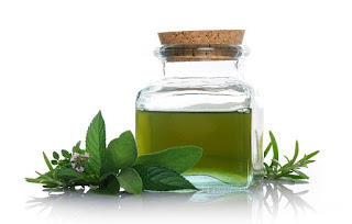 Greenery with small flowers and a green liquid in a glass jar with a cork stopper - the elements of Peppermint Oil.