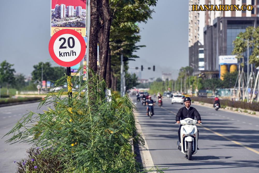 Đường 60m từ Phạm Văn Đồng ra Võ Chí Công trước khu đô thị Ngoại Giao Đoàn.