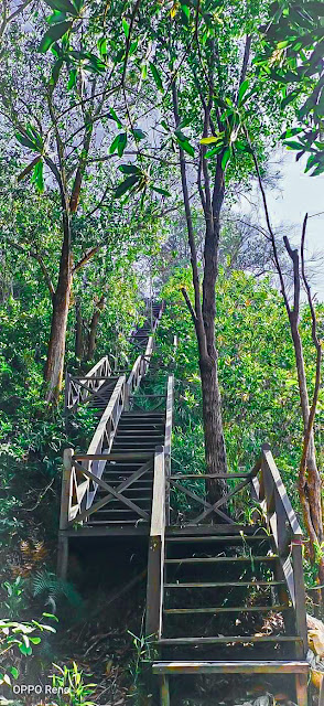 Hiking Petang di Bukit Sim Sim Sandakan