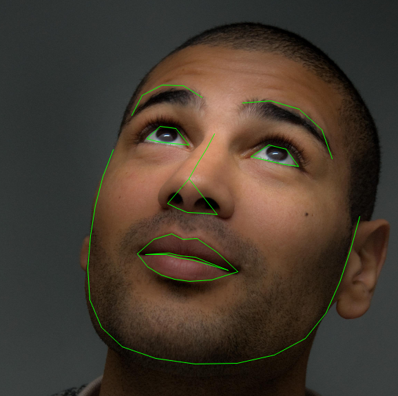 Real-Time Face Pose Estimation