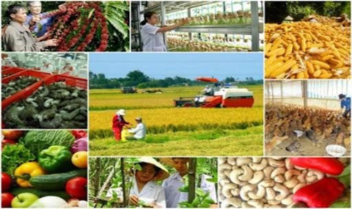 TẠI SAO phát triển các vùng chuyên canh cây công nghiệp kết hợp với công nghiệp chế biến có ý nghĩa quan trọng trong việc tổ chức lãnh thổ nông nghiệp và phát triển KT-XH ở nông thôn ?