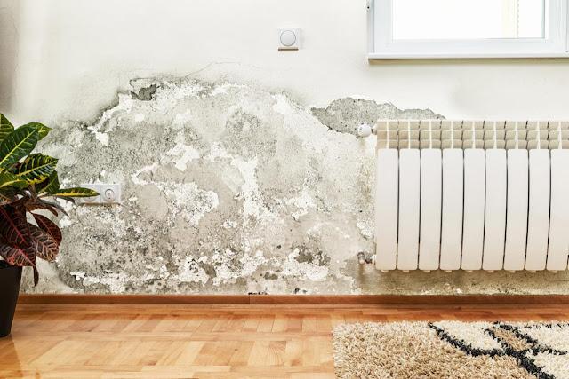 come-eliminare-umidità-in-casa-danni