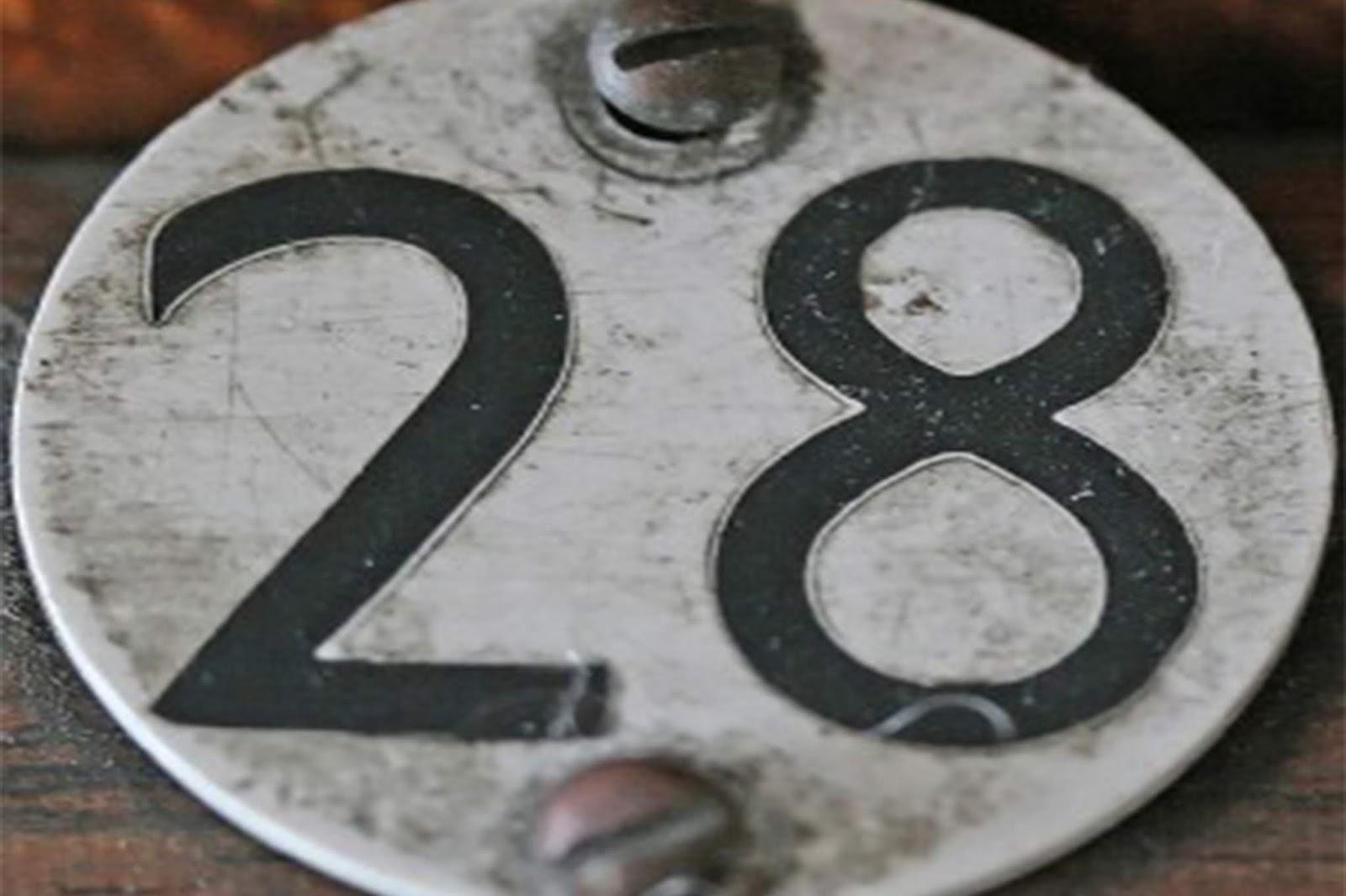 Angka 28