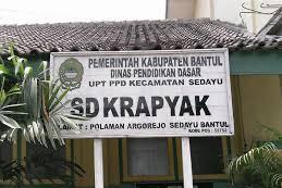 Profil Perpustakaan Sekolah SD Krapyak, Desa Argorejo, Bantul Yogyakarta