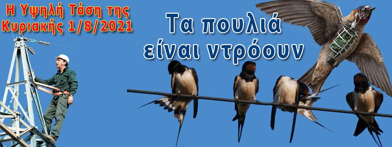 τα πουλια ειναι drones