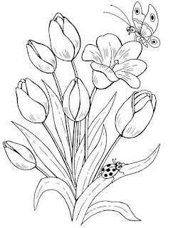 Sketsa bunga tulip