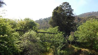 A passarela de pedestres sobre o Rio Camanducaia é cercada de verde.