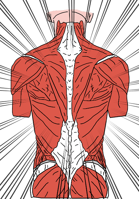 how to lower back pain?