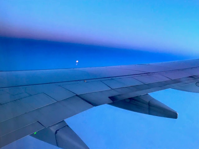 Arctic flight (c) 2020 Supratim Sanyal