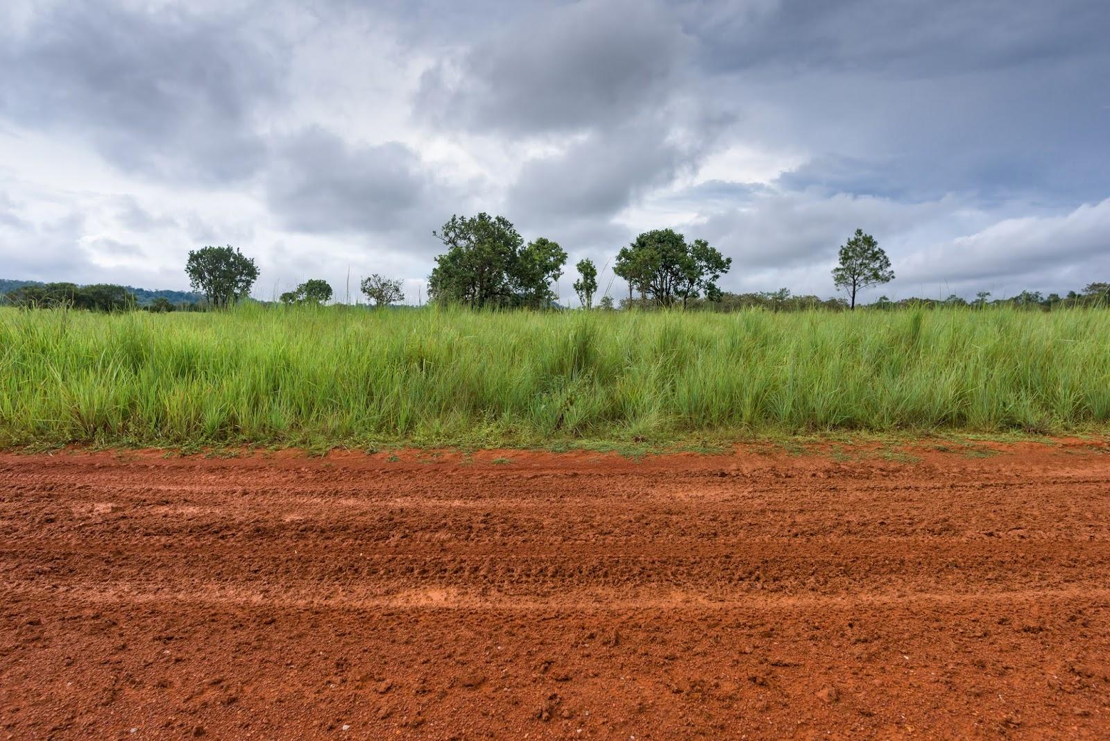 Arti Membeli Tanah