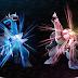 Algumas das novidades em Pokémon Brilliant Diamond e Pokémon Shining Pearl
