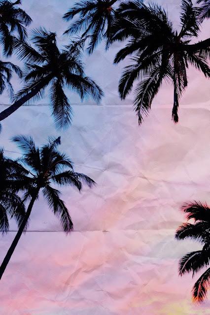 overlay tool in procreate on palm tree image