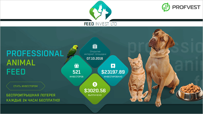 Feed Invest обзор и отзывы вклад 200$