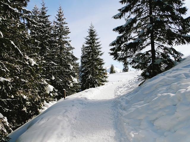 Polana Rusinowa zimą szlak