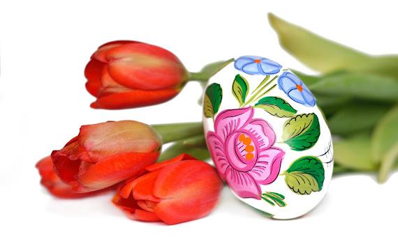 Happy Easter download besplatne pozadine za desktop 1920x1200 slike ecards čestitke Sretan Uskrs