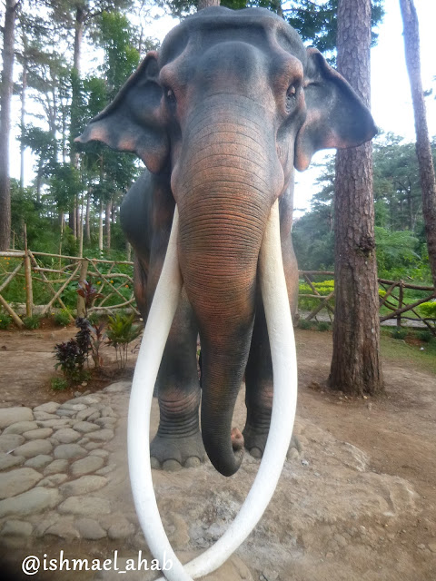 Almost real elephant in Baguio Botanical Garden