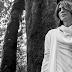 """""""LOVE & TRANQUILITY"""": EL NUEVO ÁLBUM DE SUGIZO"""