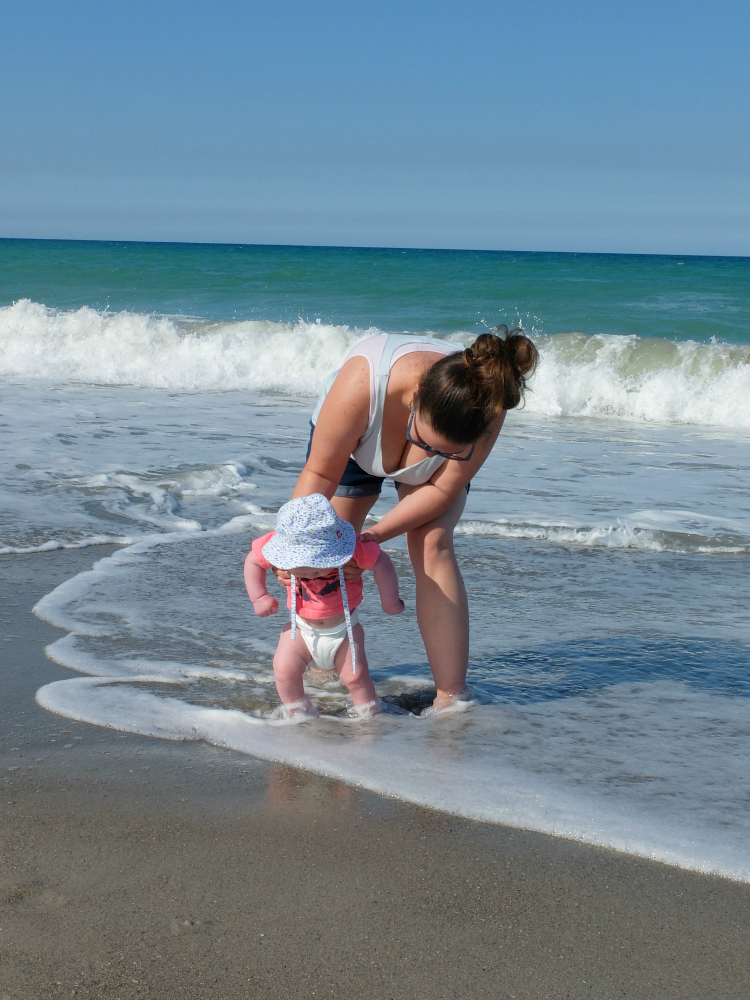 Sweet Turtle Soup - Lincoln's First Beach Visit