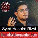 https://humaliwalaazadar.blogspot.com/2019/09/syed-hashim-rizvi-nohay-2020.html