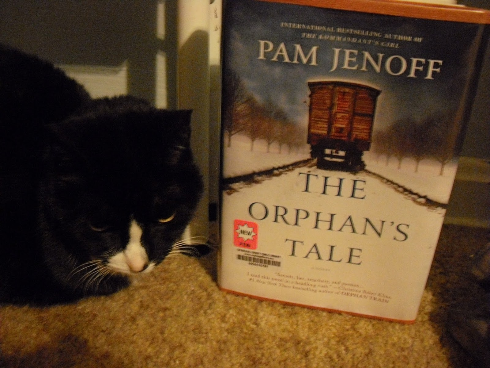 The Orphan's Tale by Pam Jenoff (2017, Paperback)