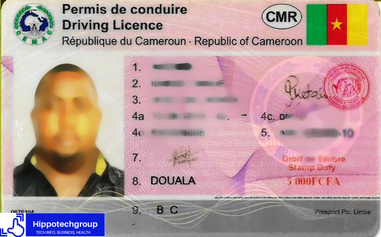 Different Types or Categories of Driver's License