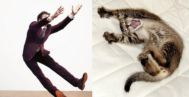Cute Kittens and Handsome Men Paired Up