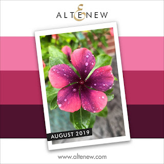 https://altenewblog.com/2019/08/03/how-to-video-august-2019-inspiration-challenge-with-may-sukyong-park/