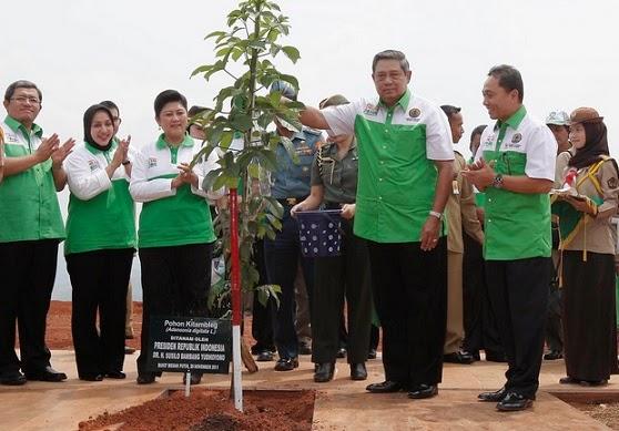 gerakan penanaman satu milyar pohon oleh sby