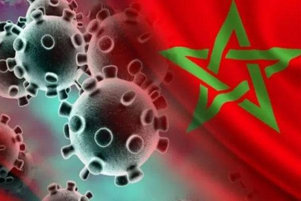 مقلق جدا... المغرب يسجل 570 حالة إصابة جديدة بكورونا وعدد الوفيات في ارتفاع