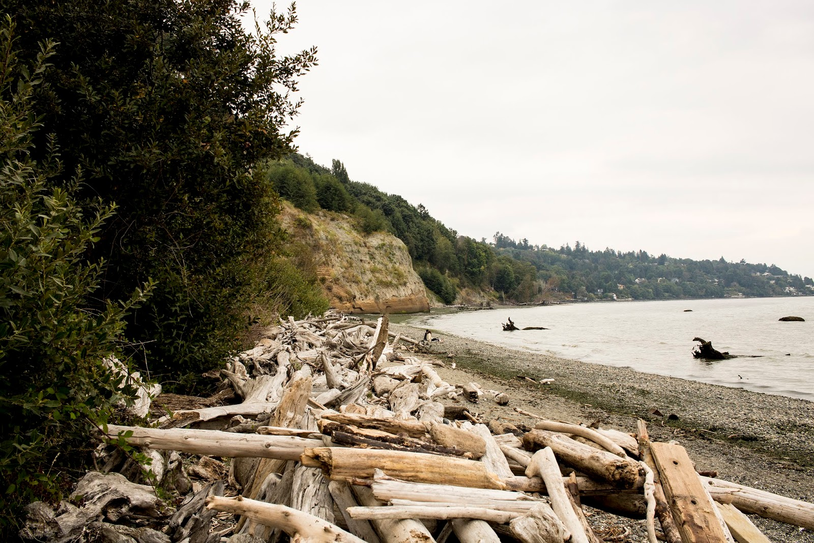 Discovery Park, Seattle, things to do in Seattle, Lumiére and Lens