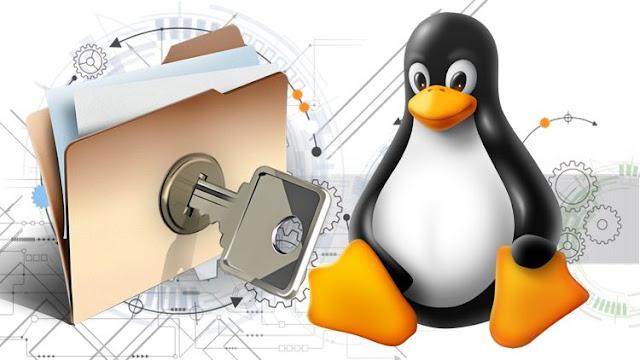 Lançado novo Minicurso de atributos no Linux