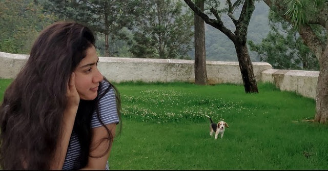Sai Pallavi (Indian Actress)  Biography, Wiki, Age, Height, Career, Family, Awards, and Many More