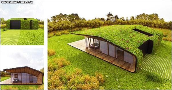 casa diferente com telhado verde