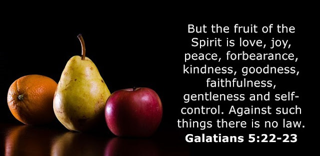 But the fruit of the Spirit is love, joy, peace, forbearance, kindness, goodness, faithfulness, gentleness and self-control. Against such things there is no law.