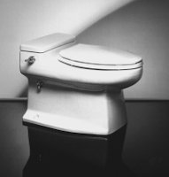 Phoenix Toilet Plumbing