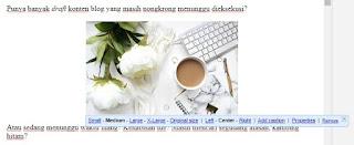agar seo friendly lakukan tahapan ini sebelum publish postingan blog