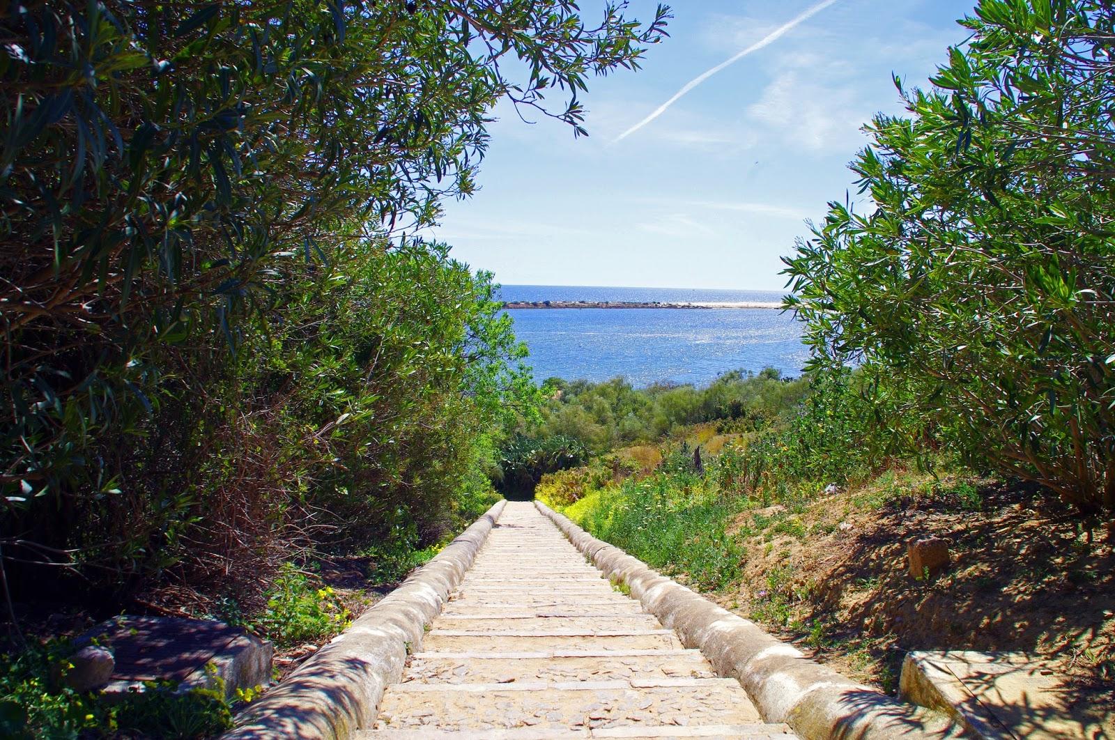 Walkway to beach Cacela Velha